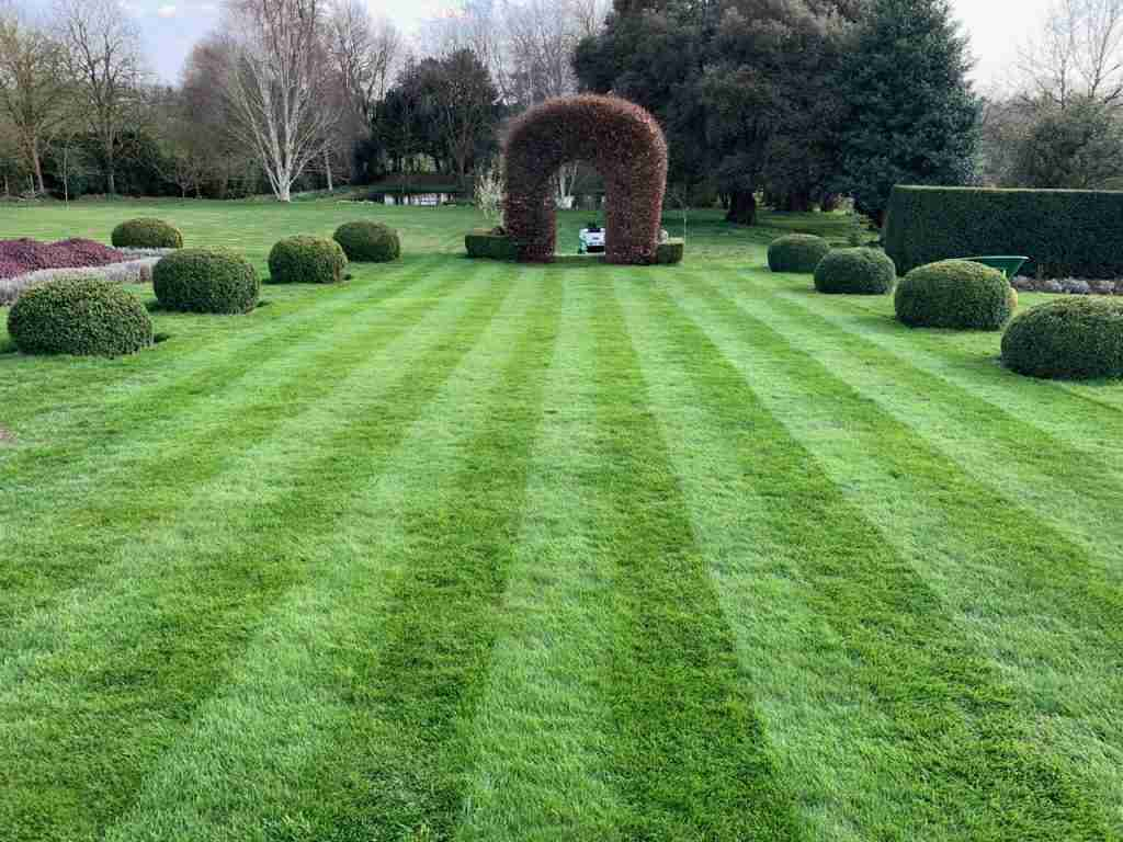 a large lawn with green stripes
