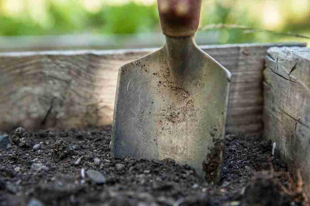 lawn soil