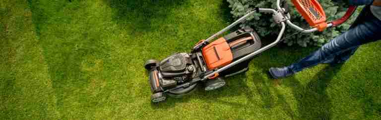 Lawn Care Calendar: Keep Your Lawn Pristine All Year Round